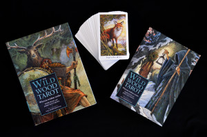 Wildwood Tarot cards and book set